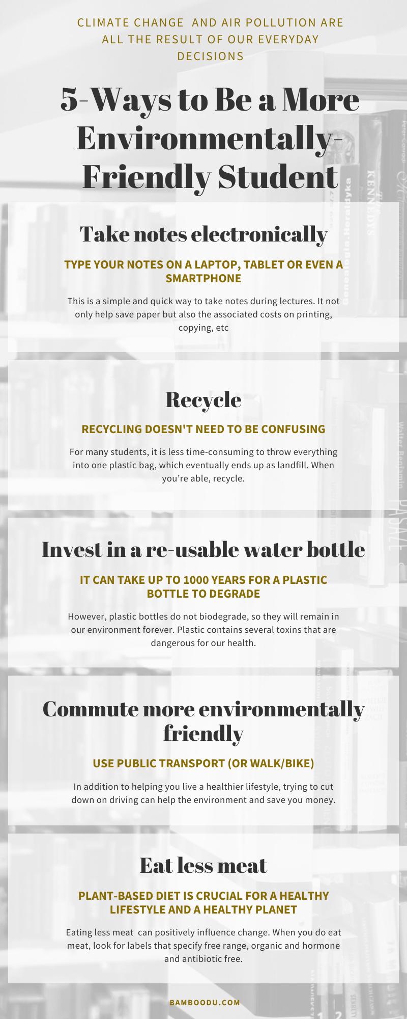 eco-friendly student infografic