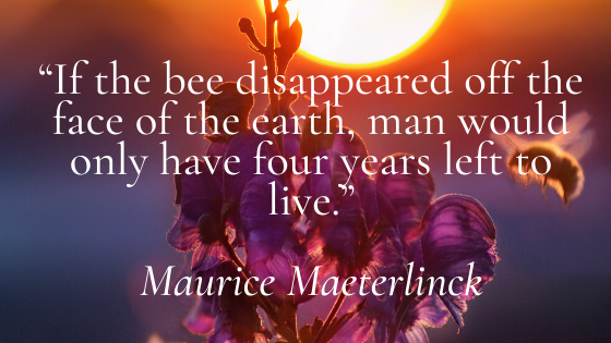 If the bee disappeared off the face of the earth