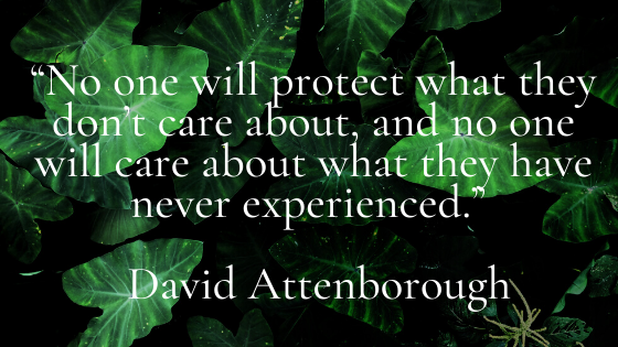 No one will protect what they don't care about